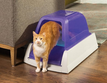 ScoopFree-Ultra-Self-Cleaning-Litter-Box
