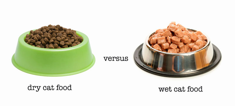catfood-wet-v-dry