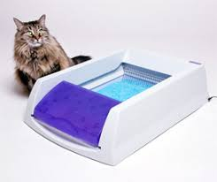 top rated automatic cat litter boxes